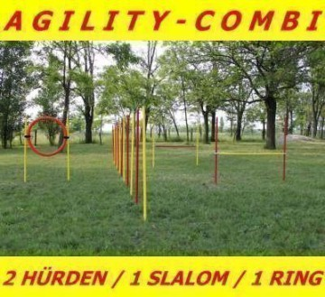 AGILITY ÜBUNGS ANFÄNGER SET MIT SPRUNGRING / SLALOM