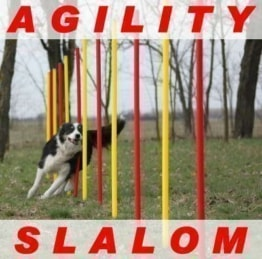 AGILITY ÜBUNGS SLALOM SET ROT/GELB FLEXIBLE