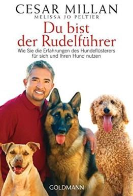 Du bist der Rudelführer: Erfahrungen des Hundeflüsterers für sich