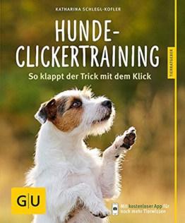Hunde Clickertraining: So klappt der Trick mit dem Click