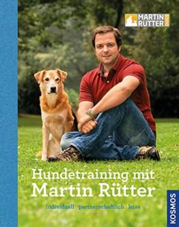 Hundetraining mit Martin Rütter, Hundeprofi, Grundlagen