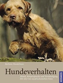 Hundeverhalten: Mimik, Körpersprache und Verständigung, Fotos