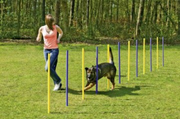 Karlie Flamingo Agility Slalom-Set 24-Teilig, Training