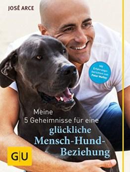Meine 5 Geheimnisse für eine glückliche Mensch Hund Beziehung