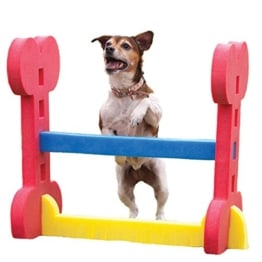 Rosewood Agility Hürde für kleine Hunde, Leichtbauteile - 1