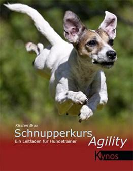 Schnupperkurs Agility: Ein Leitfaden für Hundetrainer