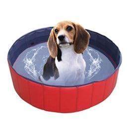 Speed Doggy Hundepool, 120x30 cm, Rot, Wasserablassventil