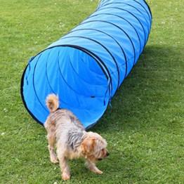 Spiel- und Spaß Tunnel, 3 m lang, ø 60 cm, blau, Agility