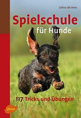 Spielschule für Hunde: 117 Tricks und Übungen, Tipps