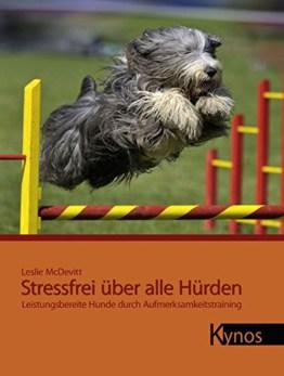 Stressfrei über alle Hürden: Leistungsbereite Hunde