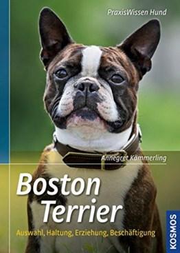 Boston Terrier (Praxiswissen Hund), Buch