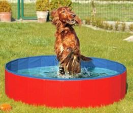 DOGGY POOL der Swimmingpool für Hunde - 160 cm