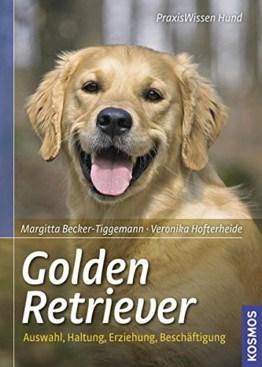 Golden Retriever: Auswahl, Haltung, Erziehung, Beschäftigung