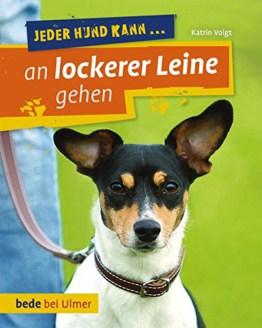 Jeder Hund kann an lockerer Leine gehen: Leinenführung