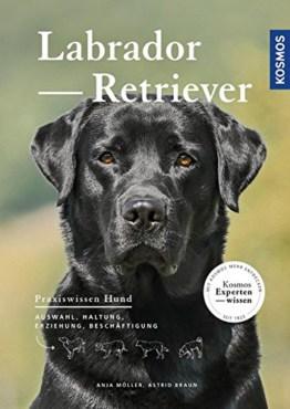 Labrador Retriever: Auswahl, Haltung, Erziehung, Beschäftigung
