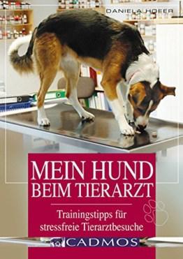 Titel: Mein Hund beim Tierarzt