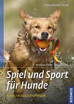 Spiel und Sport für Hunde: Action, Tricks und Schnüffelspaß