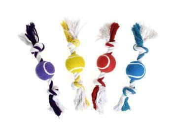 Das Seil mit Baumwollknoten und Tennisball.