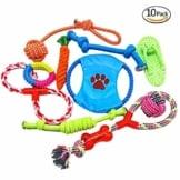 Ciaoed Hundespielzeug Set